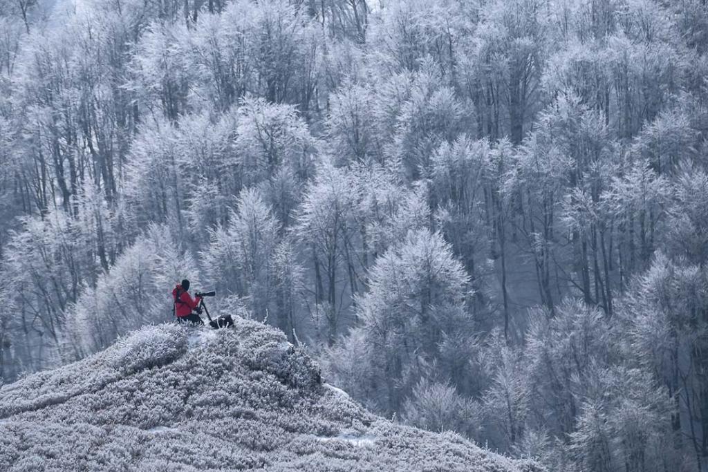 Fotograf krajobrazu na Bukowym Berdzie